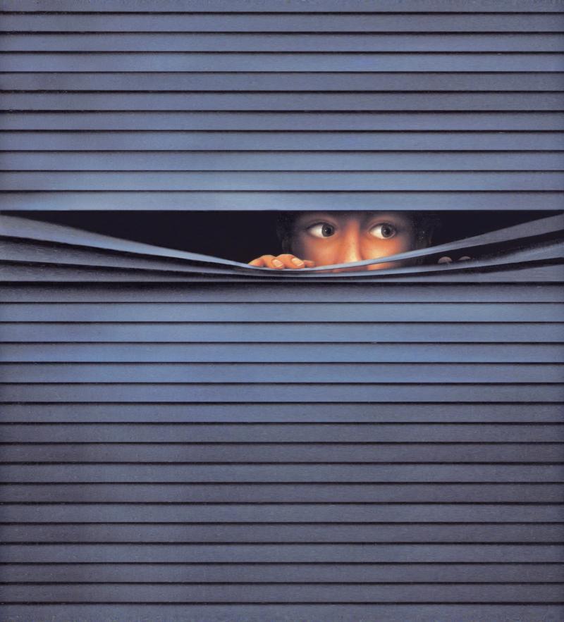 15 Fenster Rollo-Bub 2012 Siebdruck