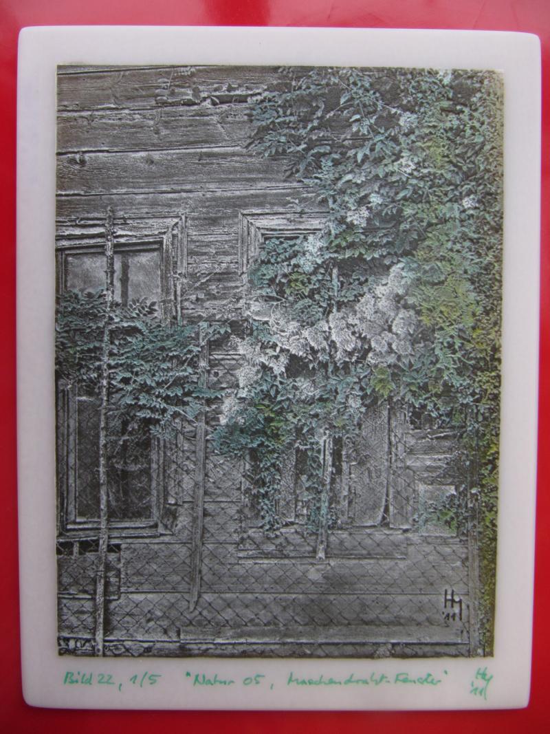 a 051 Kameographie Maschendraht-Fenster